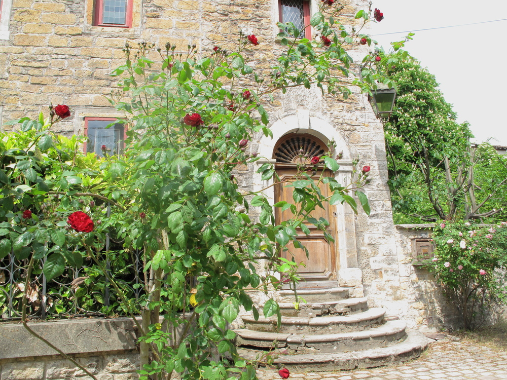 Romantic old house on the Île Barbe, with roses at the door