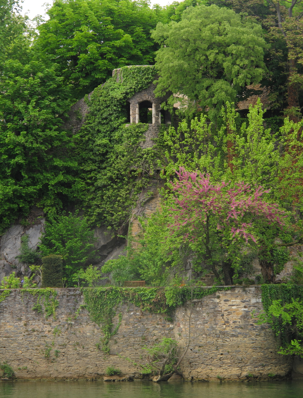 An overgrown castle on a small island in the depths of Lyon