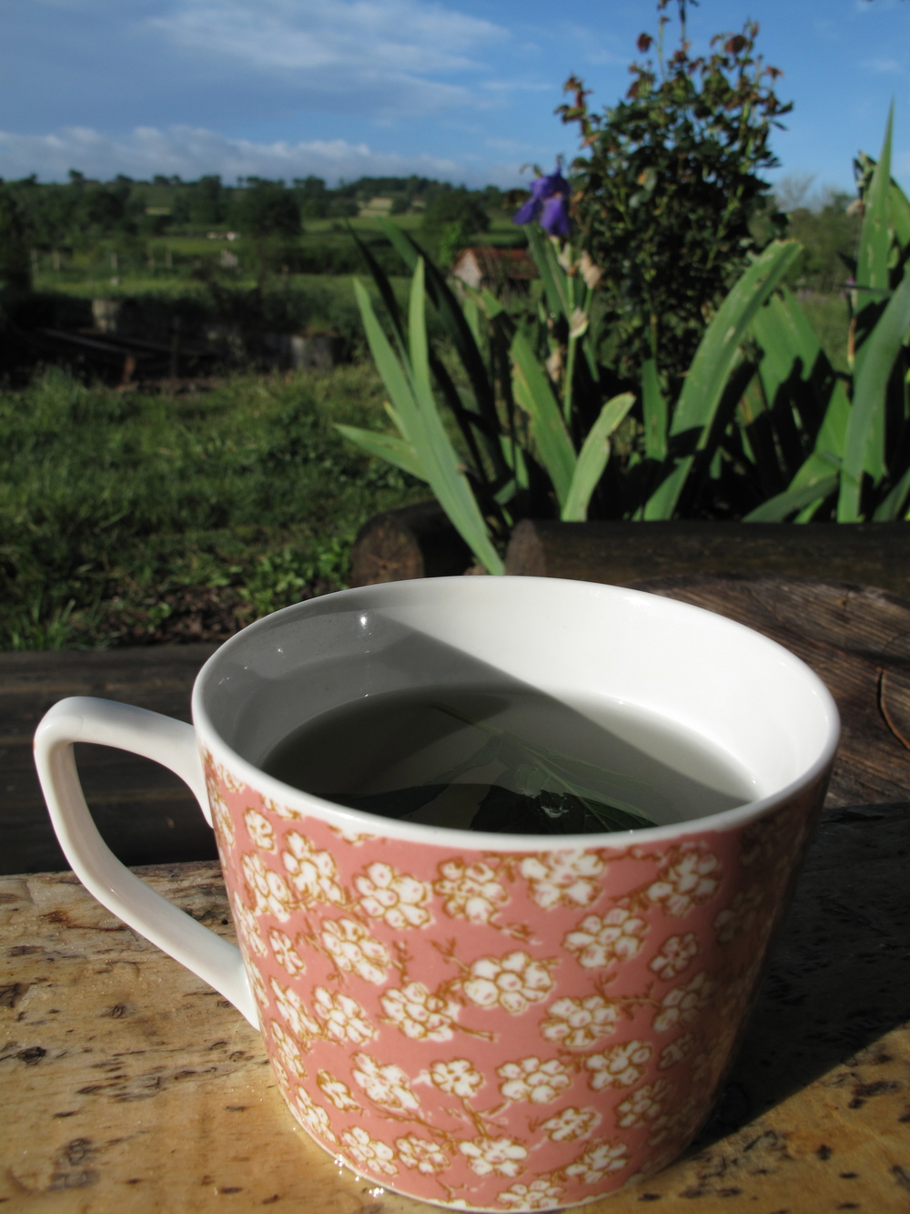 A lovely cup of tea and yoga in the morning at Brenazet