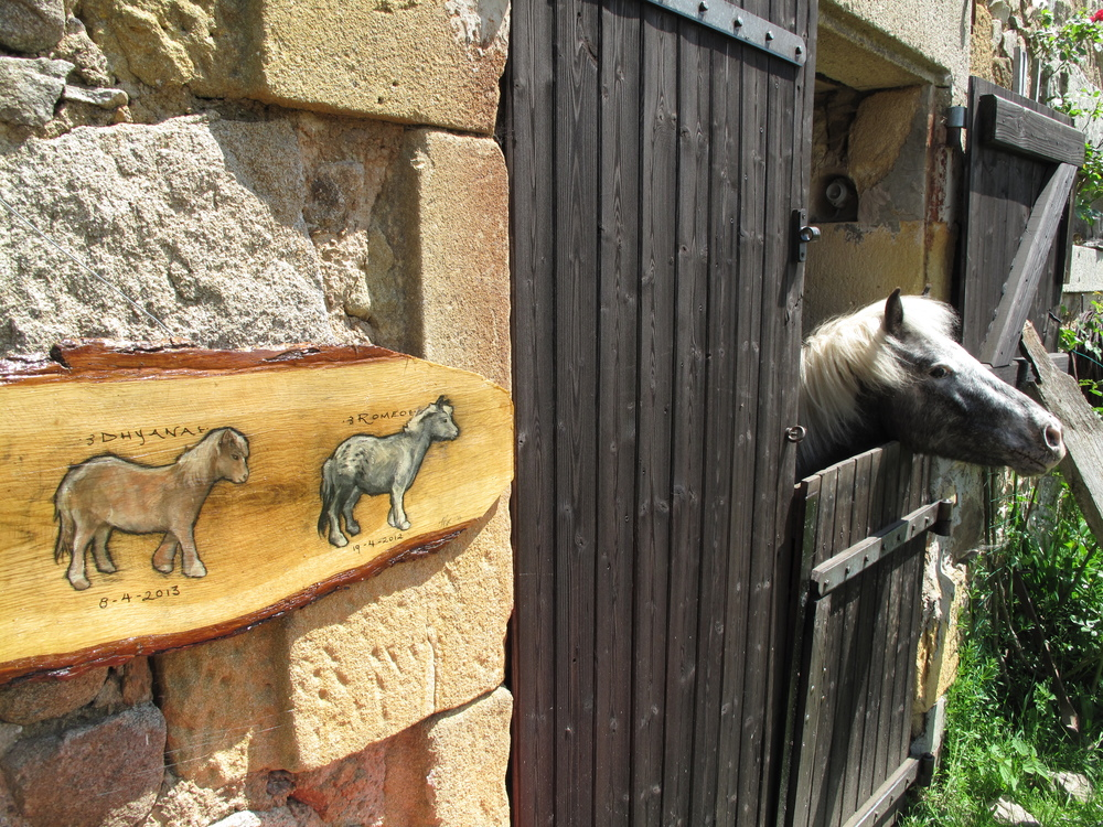 Horses in their stable and a beautiful painting of them done by a woofer, at Brenazet