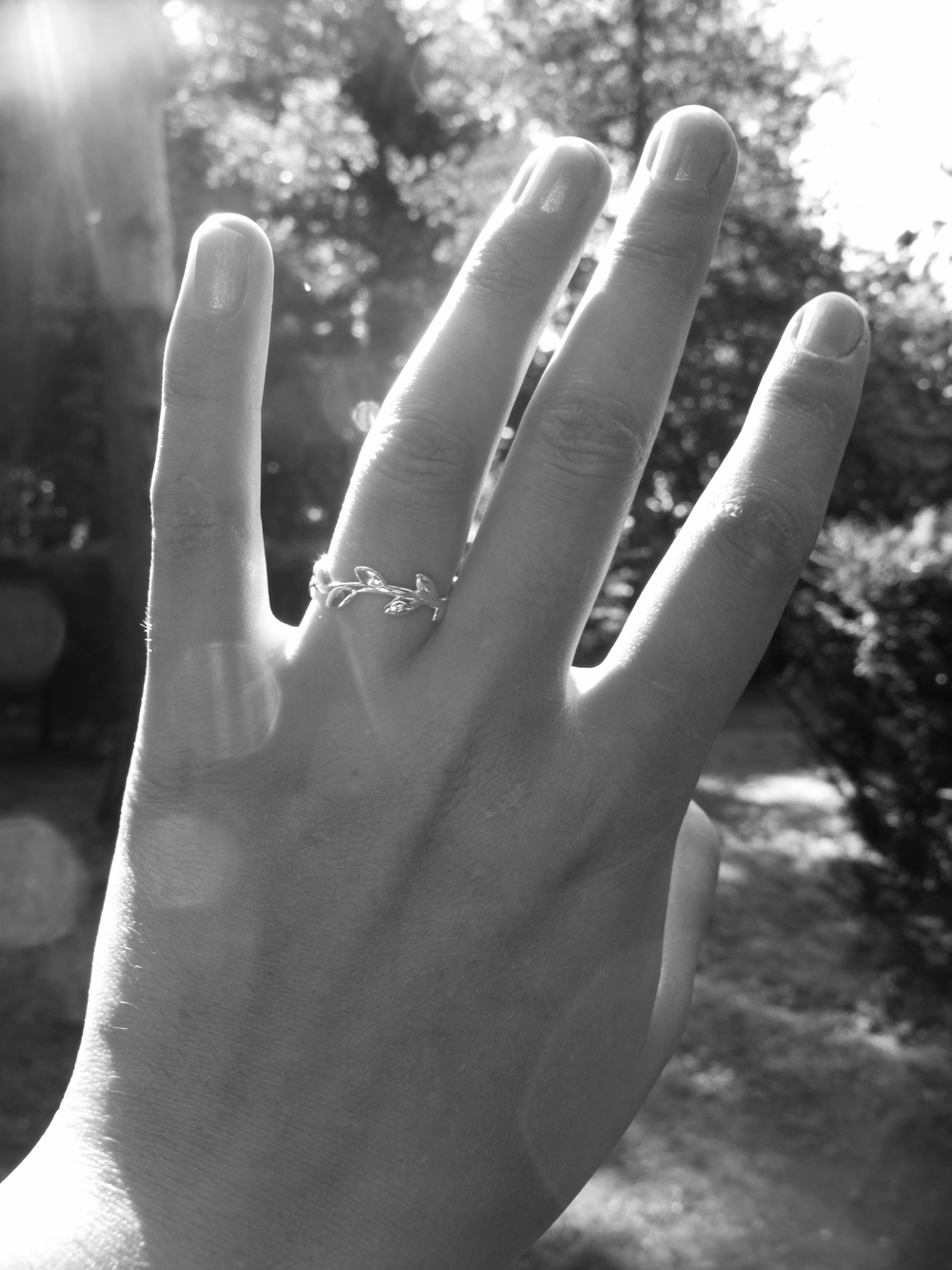 My engagement ring - a silver tiffany's band in the form of an olive branch