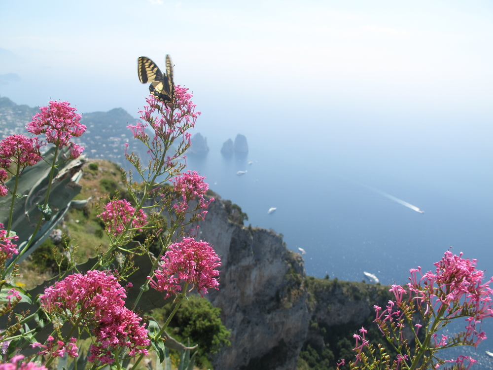 Mount Solaro, Anacapri. One of the most beautiful places in Italy!