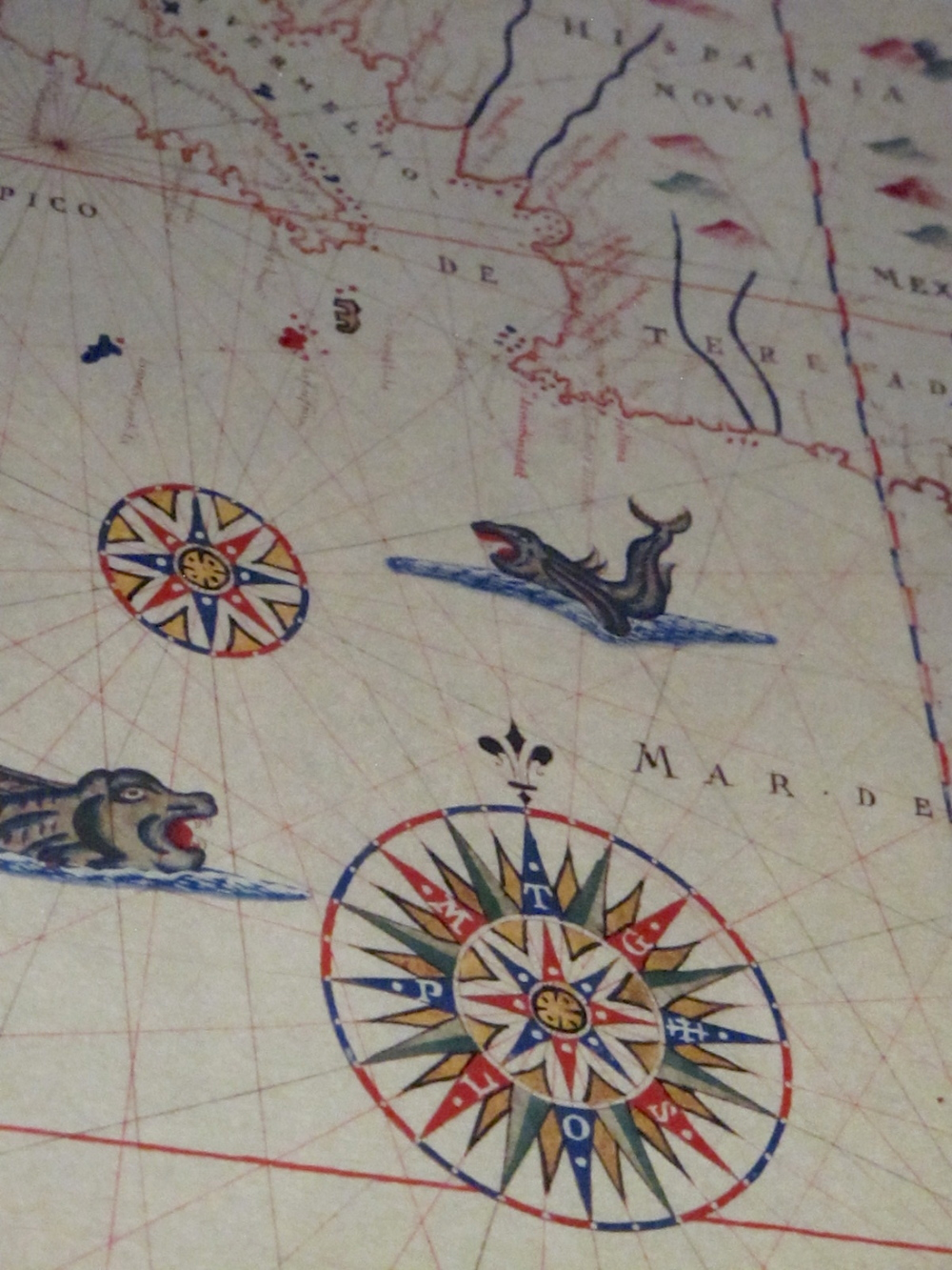 Museo Galileo medieval maps with monsters