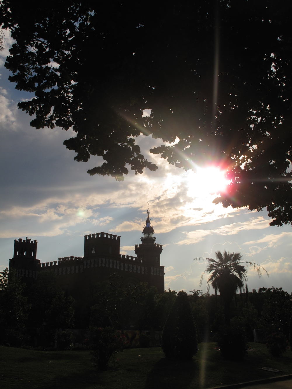 Sunset rays over old buildings and palm trees in Barcelona