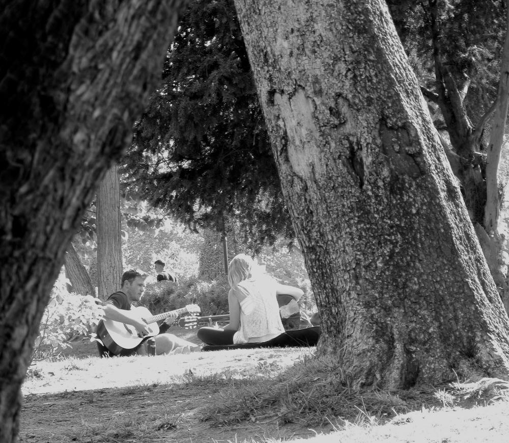 People playing guitar in Parc de la Ciutadella