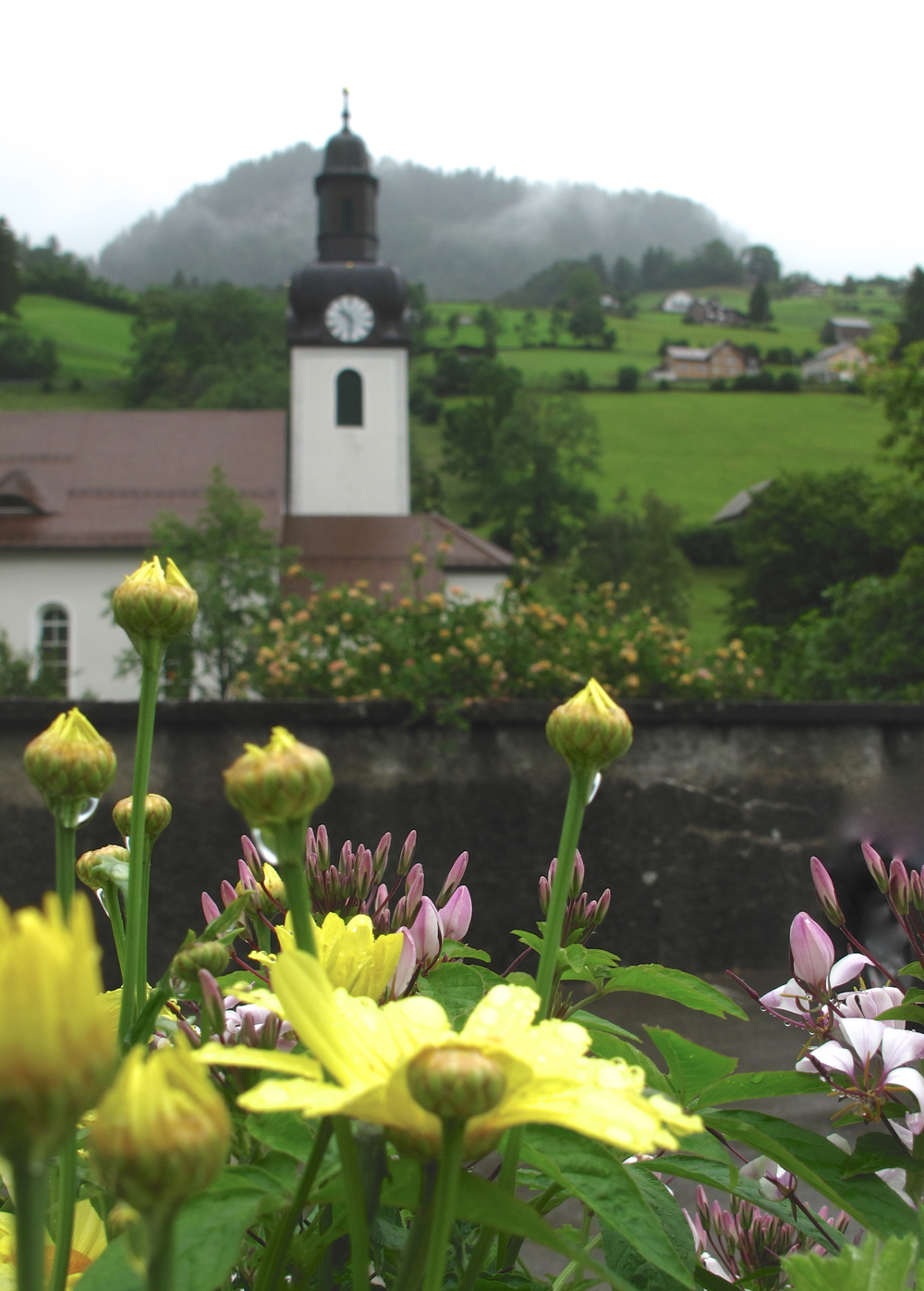A church and a small village and flowers in Austria on a rainy day
