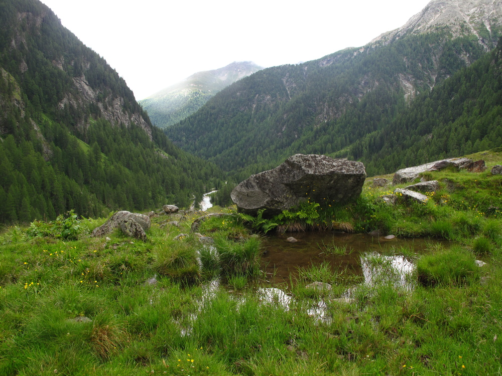 A tiny pond high up in the Austrian mountains.