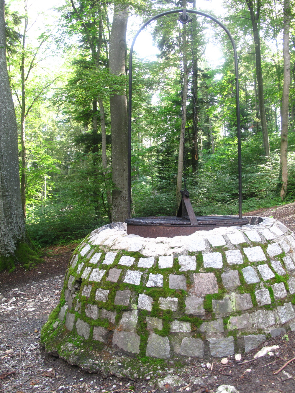 Wishing well in the Black Forest