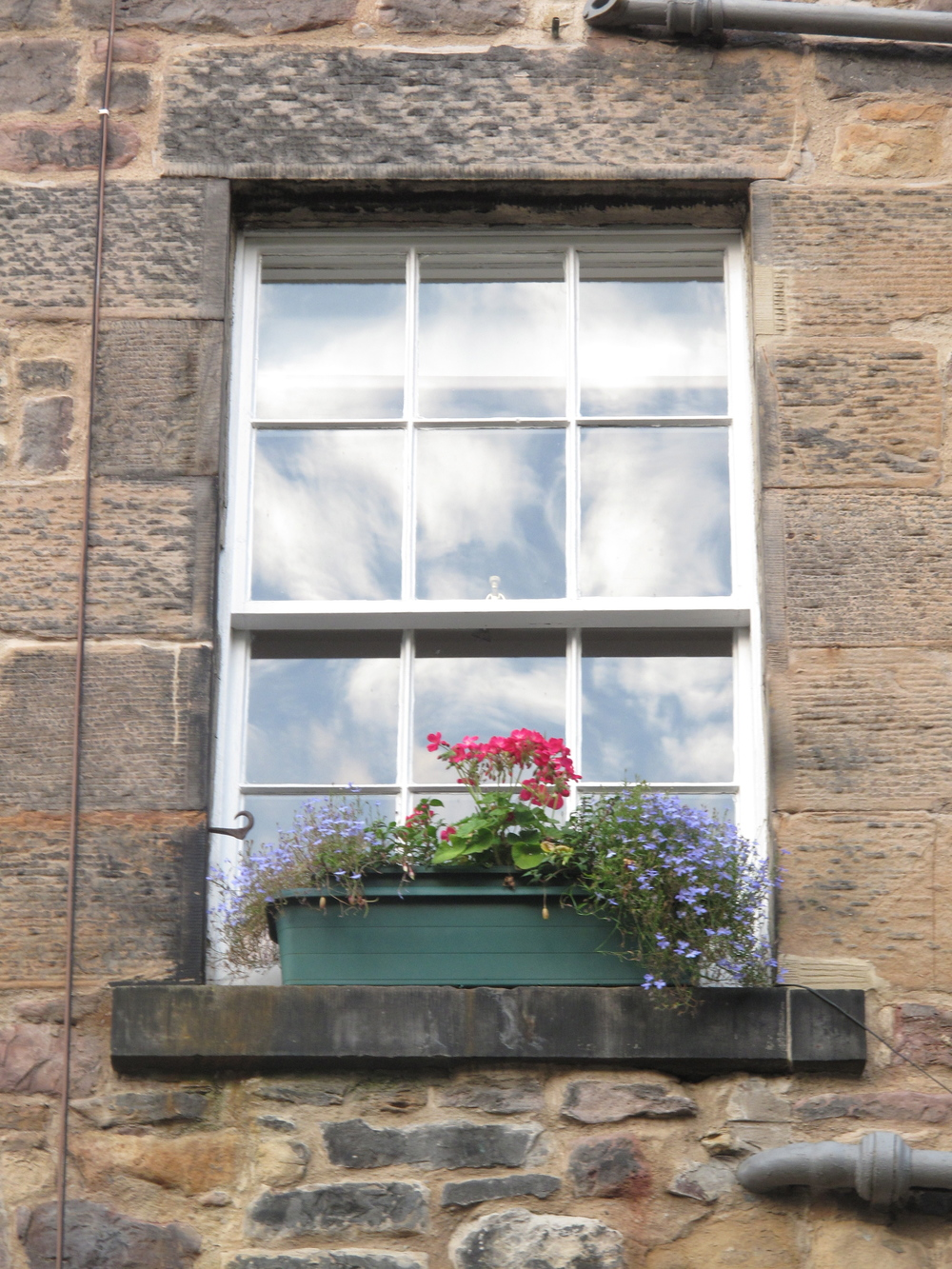 Clouds and flowers at the window in Edinburgh.
