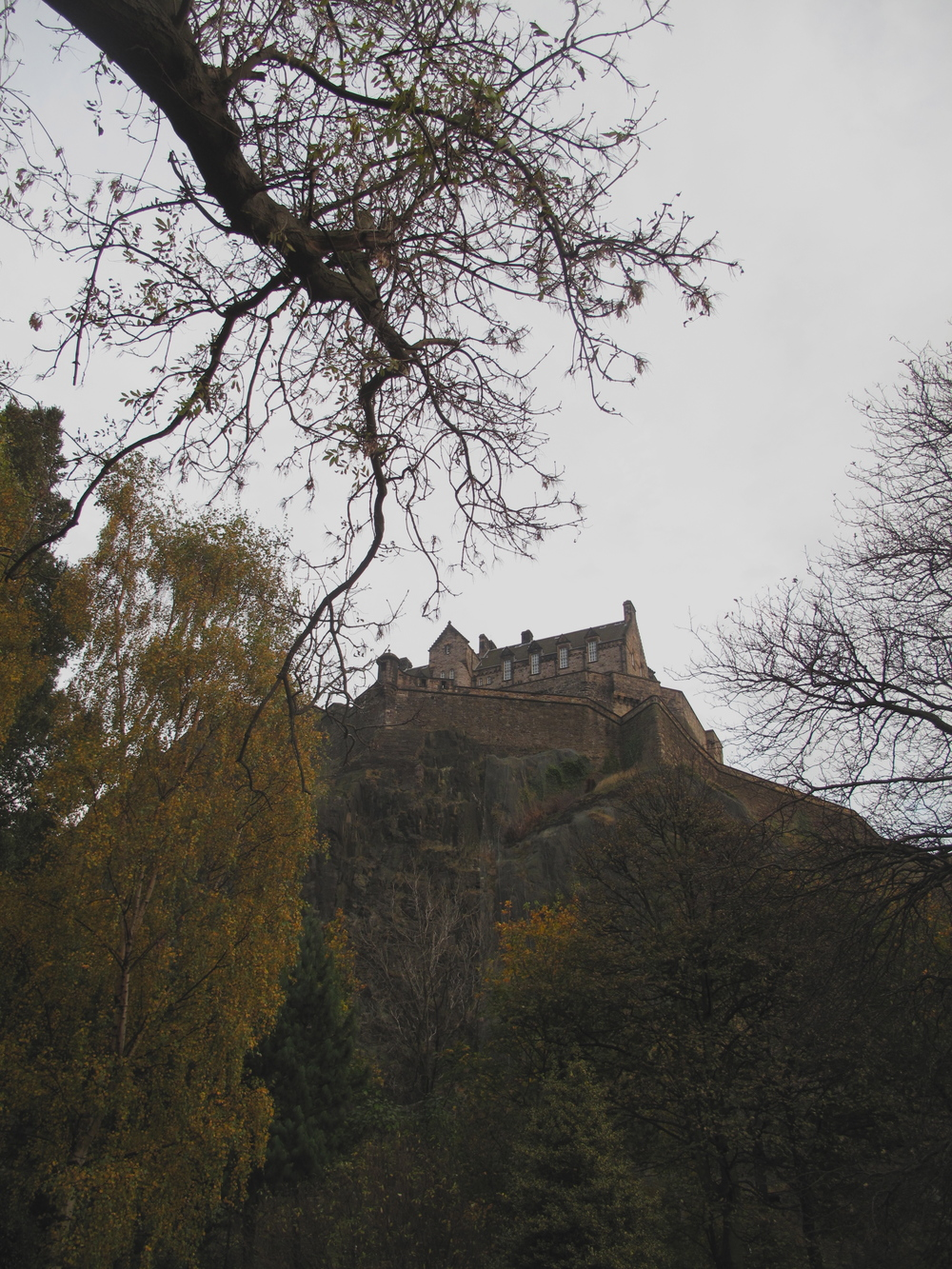 Edinburgh Castle framed by autumn and winter trees - spooky castle on a cliff.