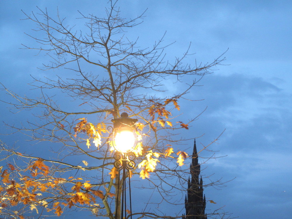 Blue skies at dusk, lamplight and autumn leaves.