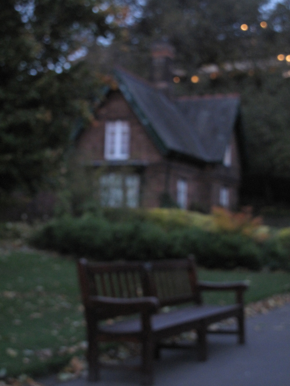 Princes Street Gardens at dusk - blurry photography.
