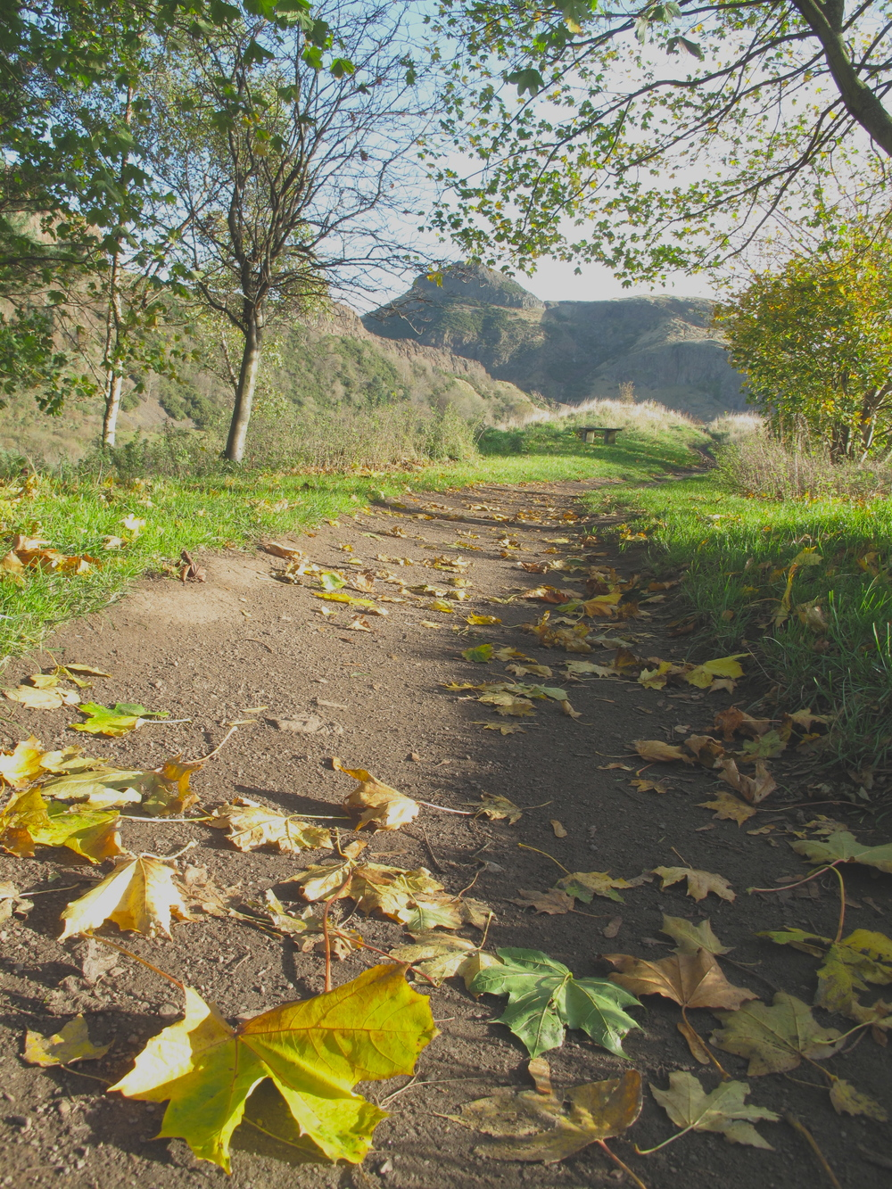 Walking paths in Edinburgh in autumn.