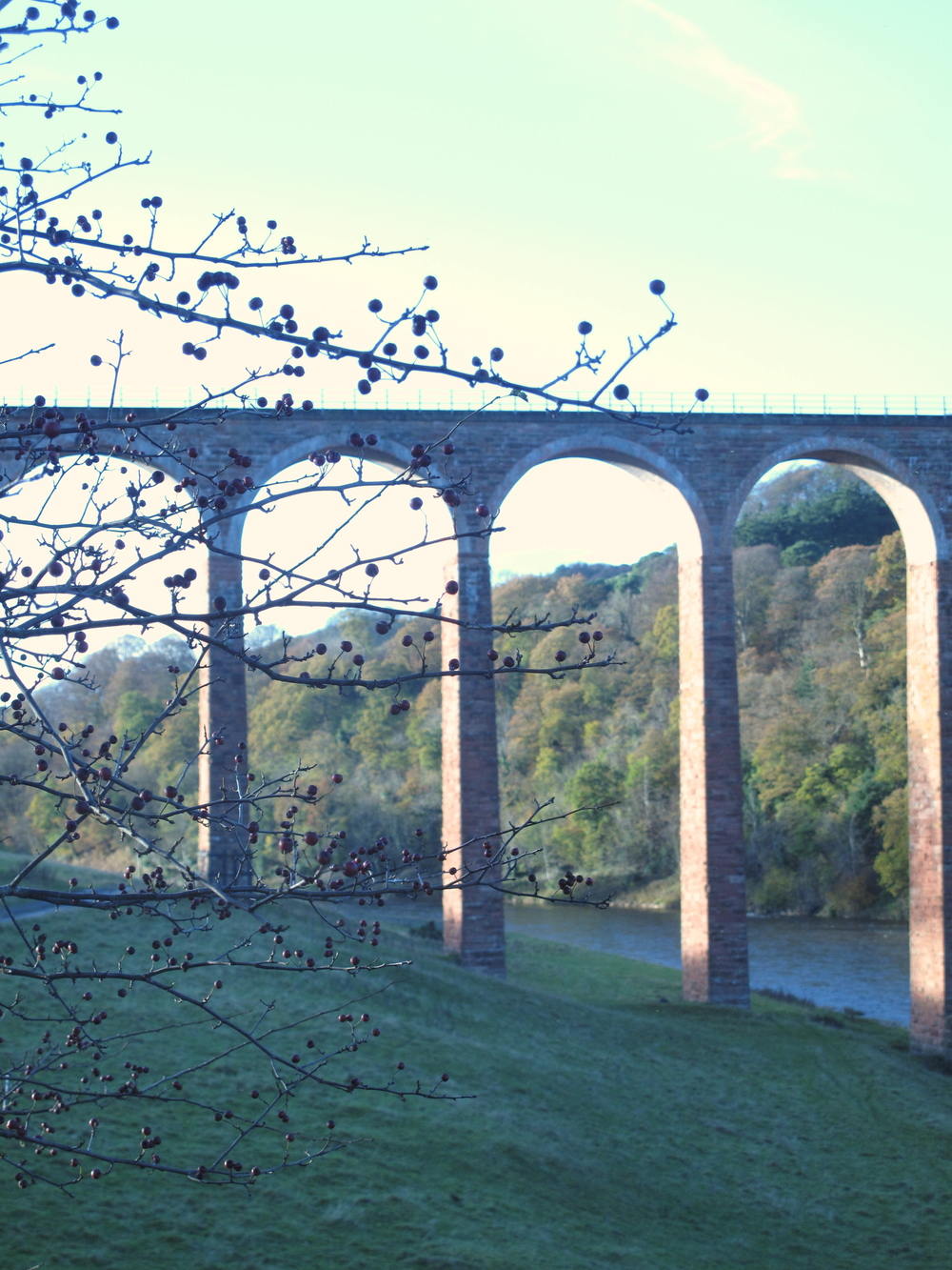 Old arched bridge over a river, Scotland.