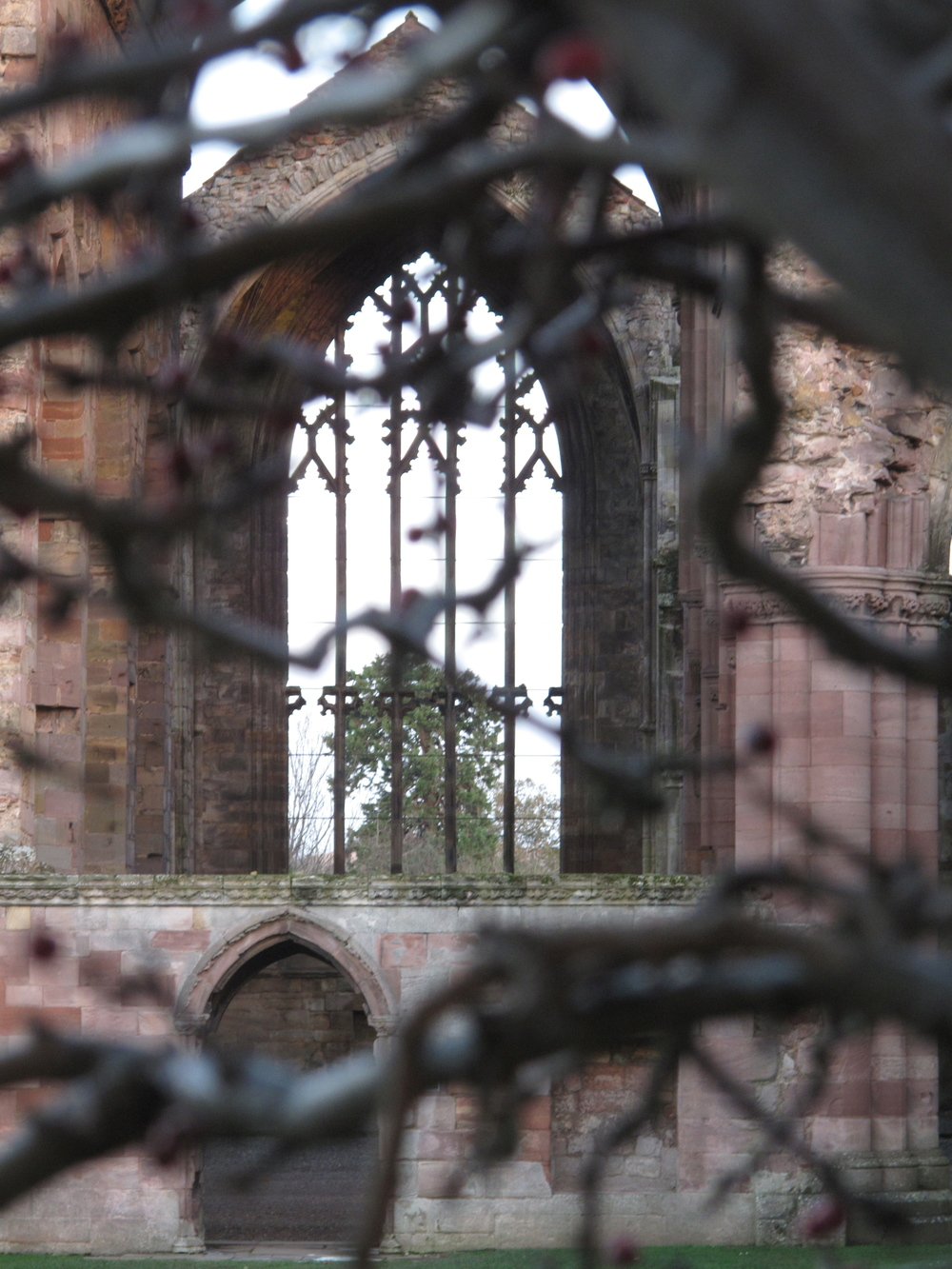 Melrose Abbey window tracery
