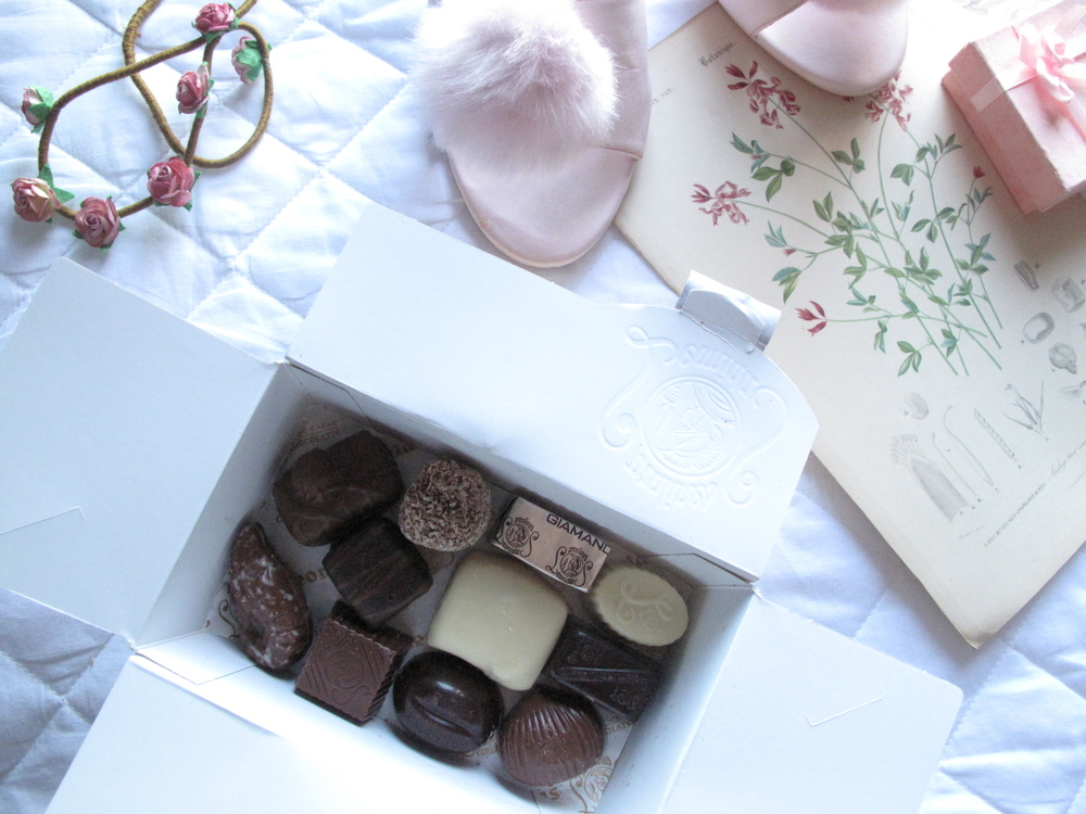 Leonida luxury chocolates from Belgium, one small box.