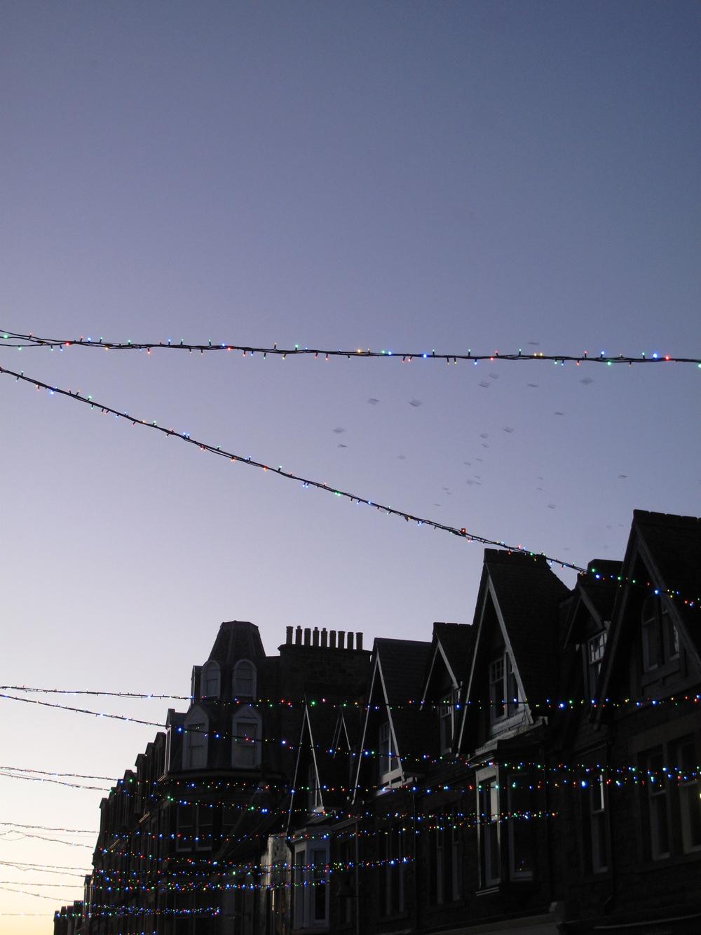 Christmas lights at dusk, North Berwick.
