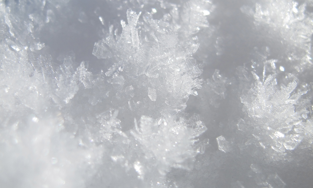 Snow crystals up close.