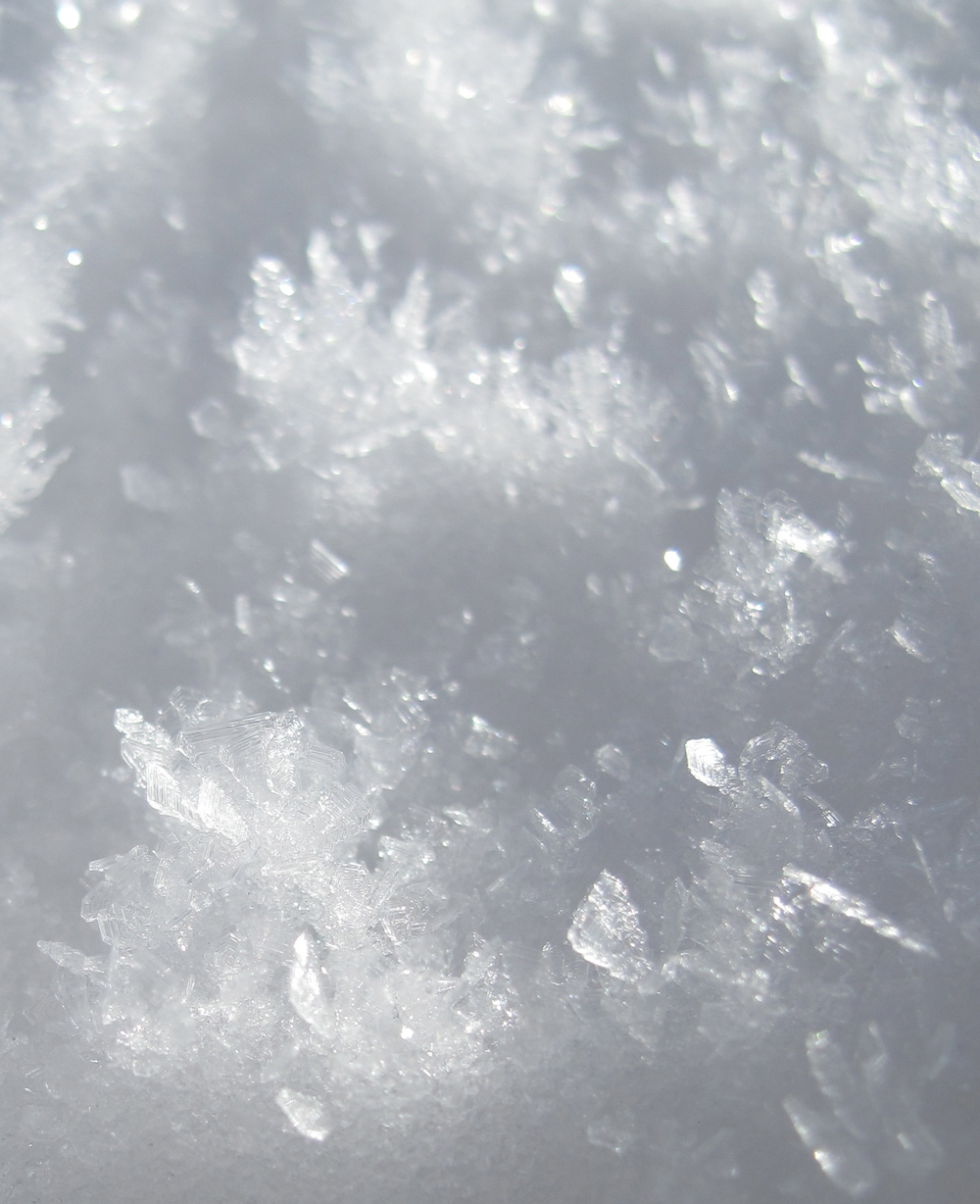 Snow flake crystals in snow.