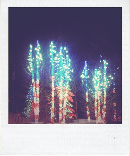 Christmas lights on trees in Vail Village