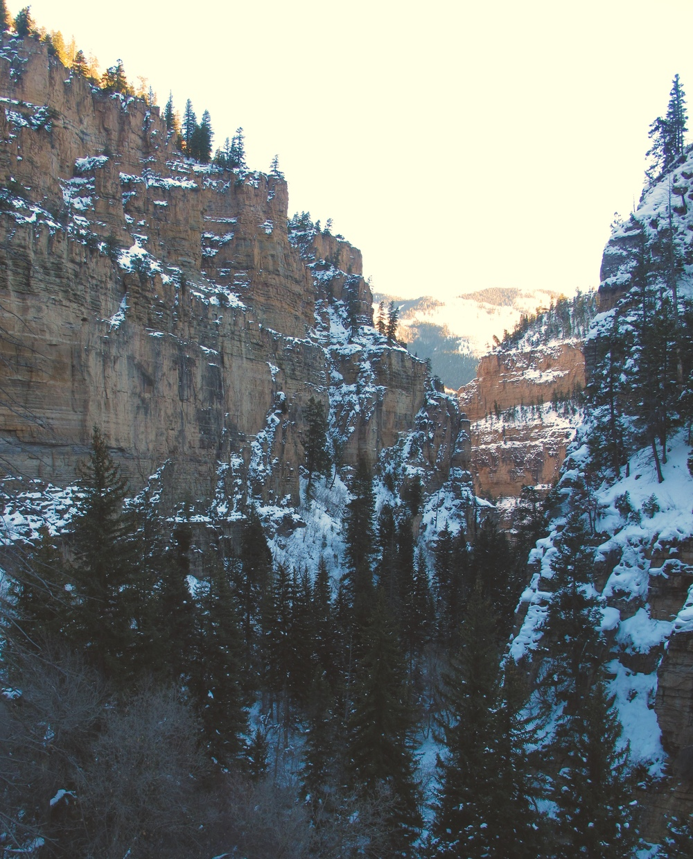 Mountains beside Hanging Lake, CO. With pine trees and snow.