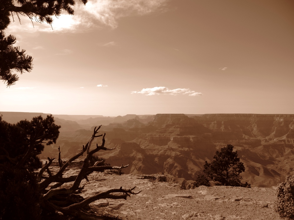 The Grand Canyon, in black and white.