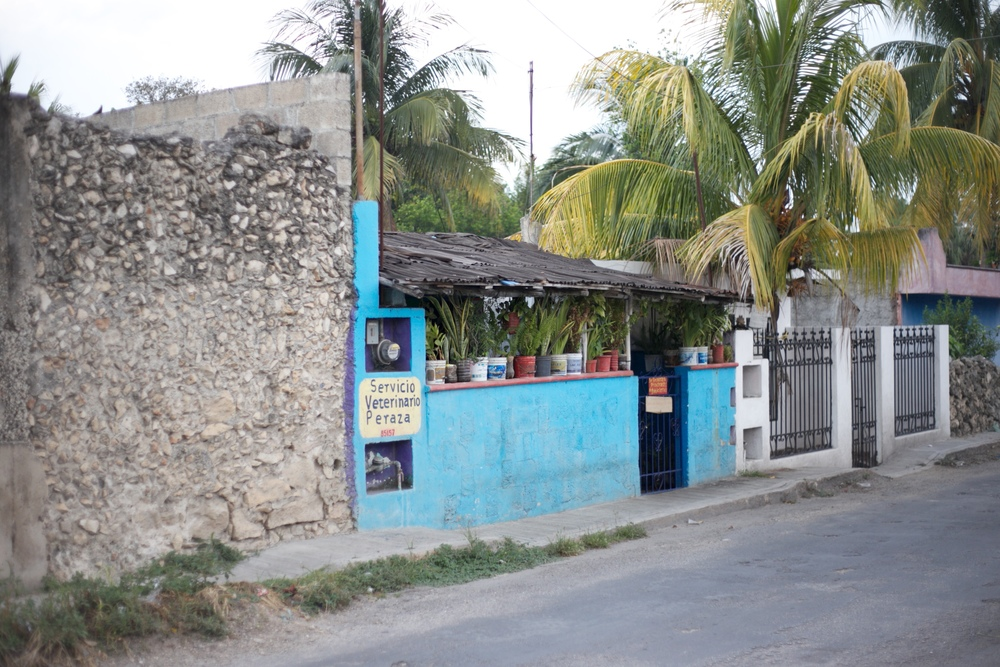 Small colourful concrete houses near Cancun, Mexico. With palm trees outside.