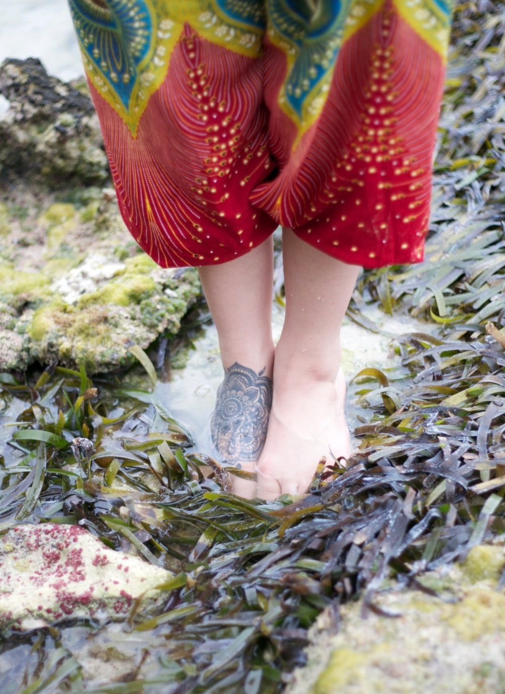 Brenda standing in seaweed in the shallows of the sea.