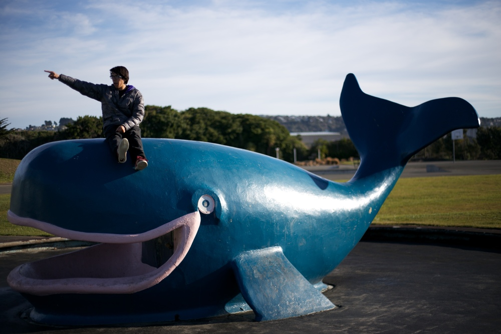 The whale fountain at the Dinosaur Park in Dunedin.