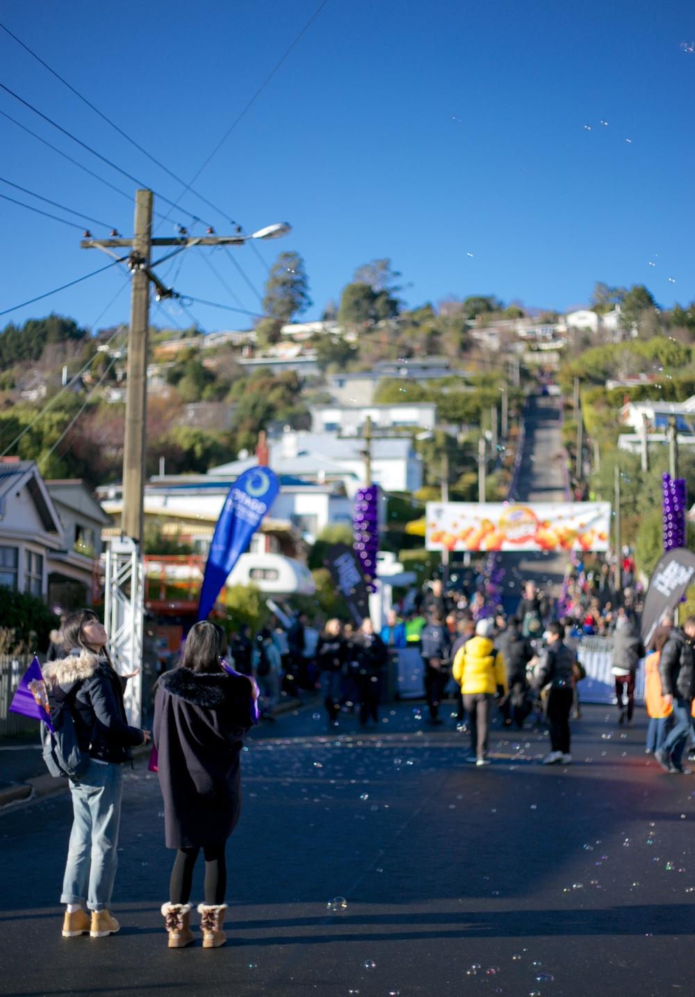 Baldwin Street and the Jaffa Race, Dunedin NZ.