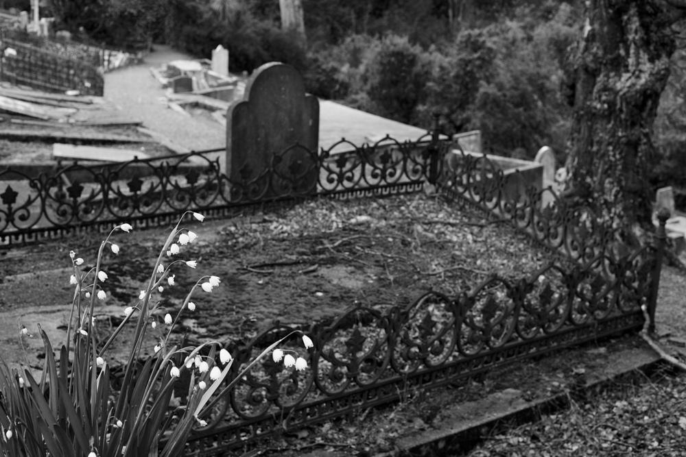 The Northern Cemetery, Dunedin.