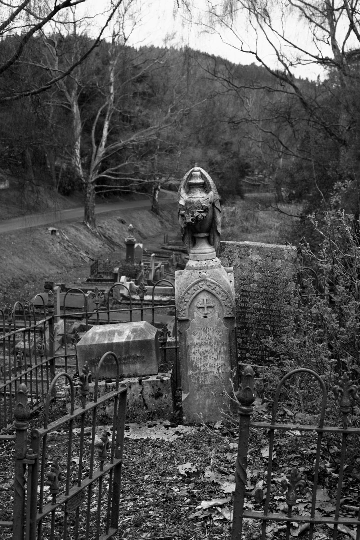 Gravestones at the North Cemetery in Dunedin.