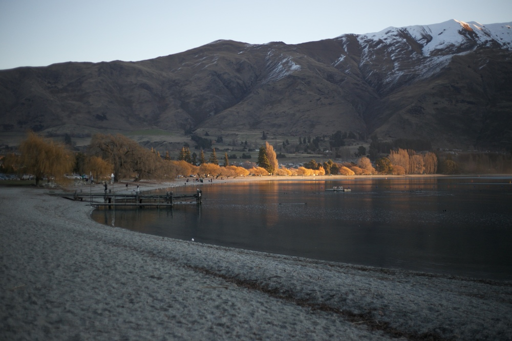 Sunset casting light over the autumn trees on the shores of Lake Wanaka