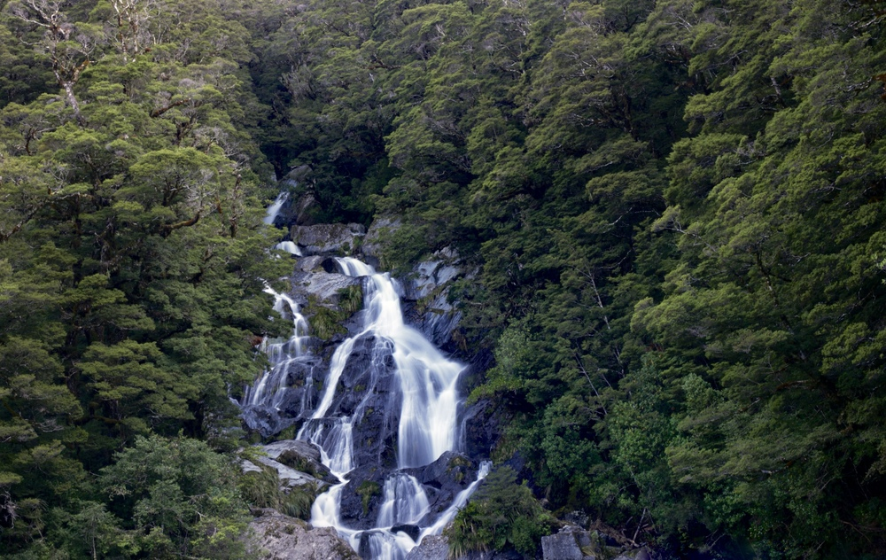 Fantail falls on the West Coast of NZ.