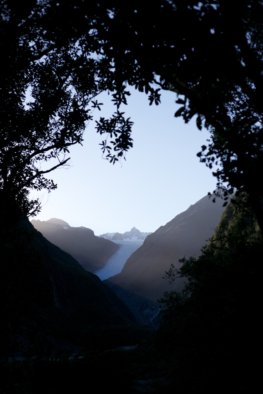 Fox Glacier at dawn seen through the trees.