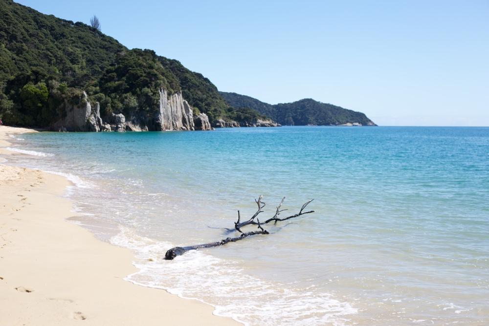 Blue seas on the Able Tasman beach of Anapai Bay.