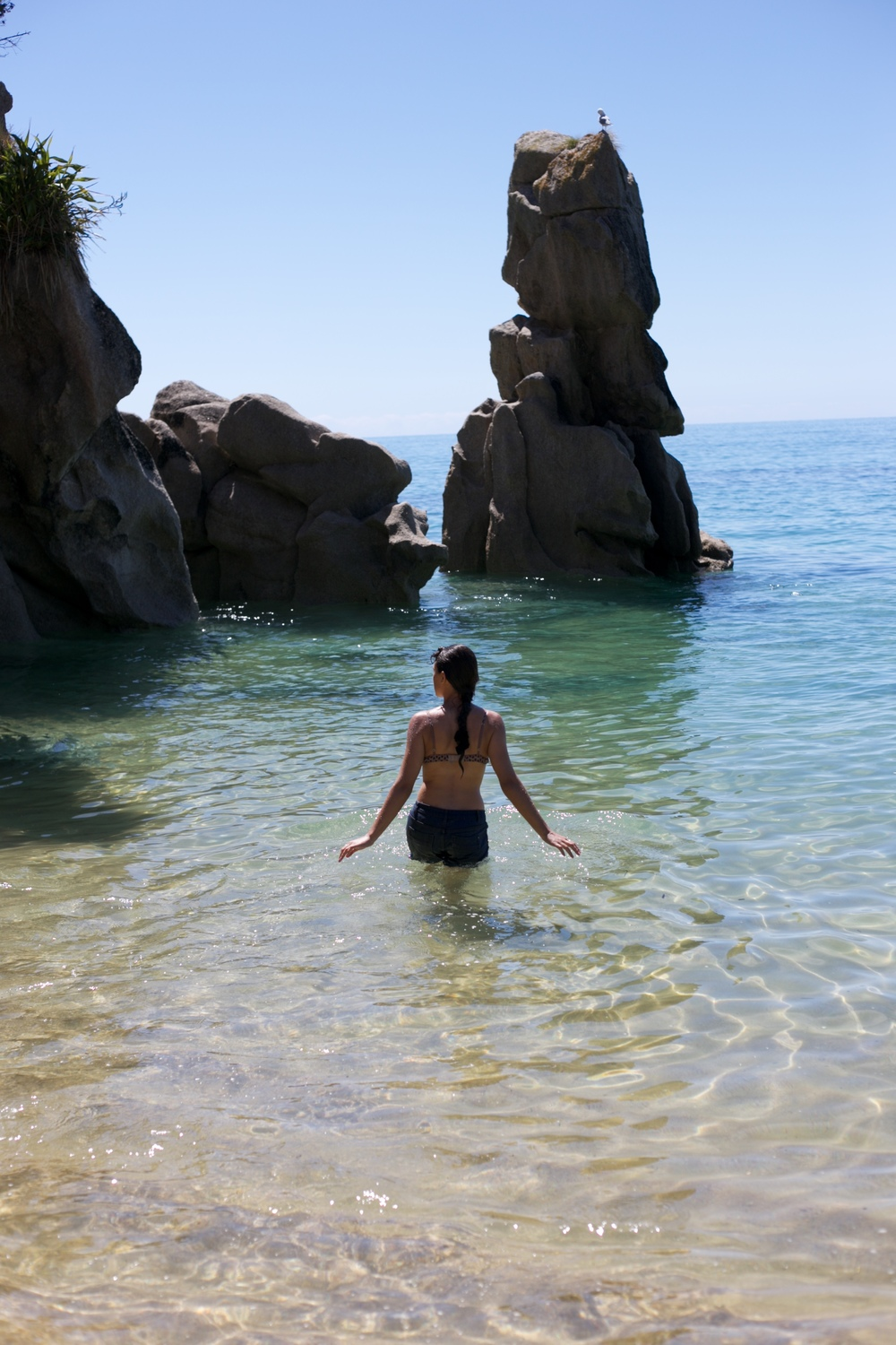 Swimming in the Able Tasman.