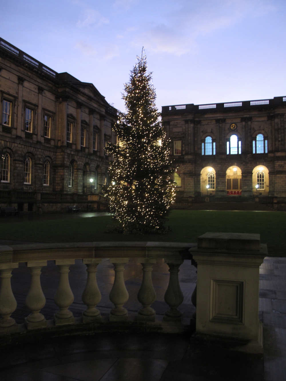 Christmas tree in the Medical department of the University of Edinburgh