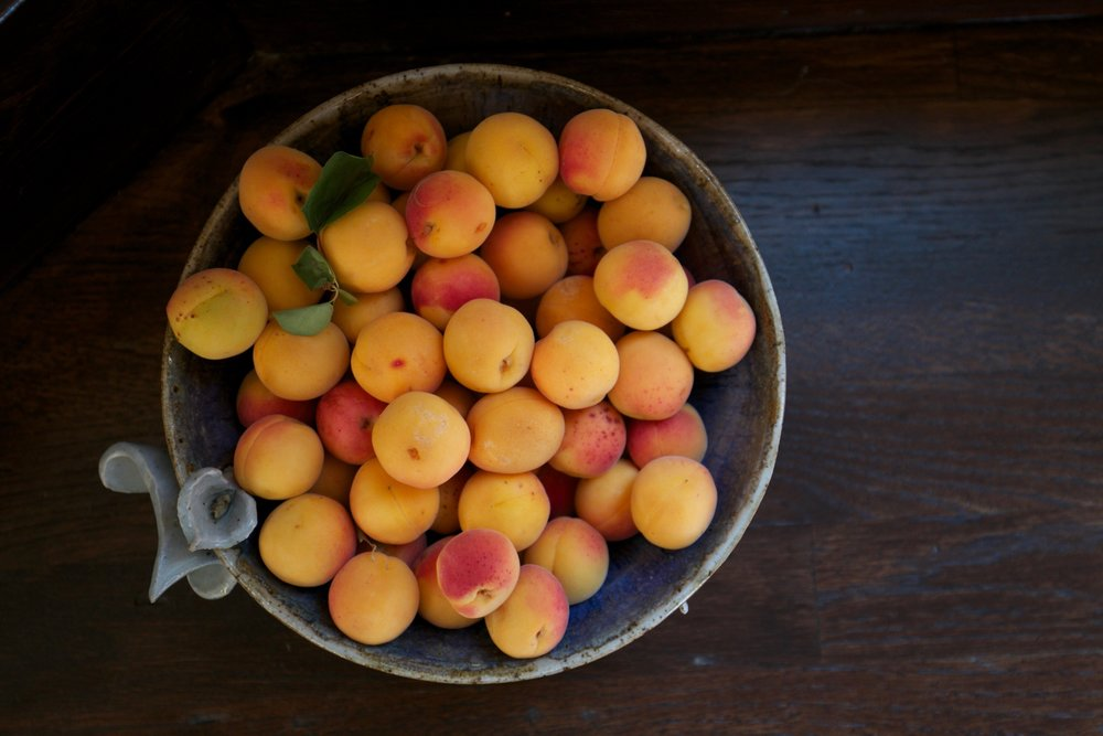 Home grown apricots.