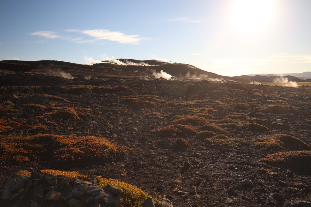 myvatn steaming ground