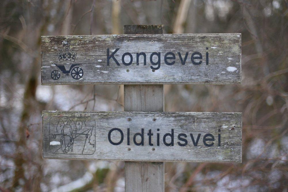kongevei path Norway