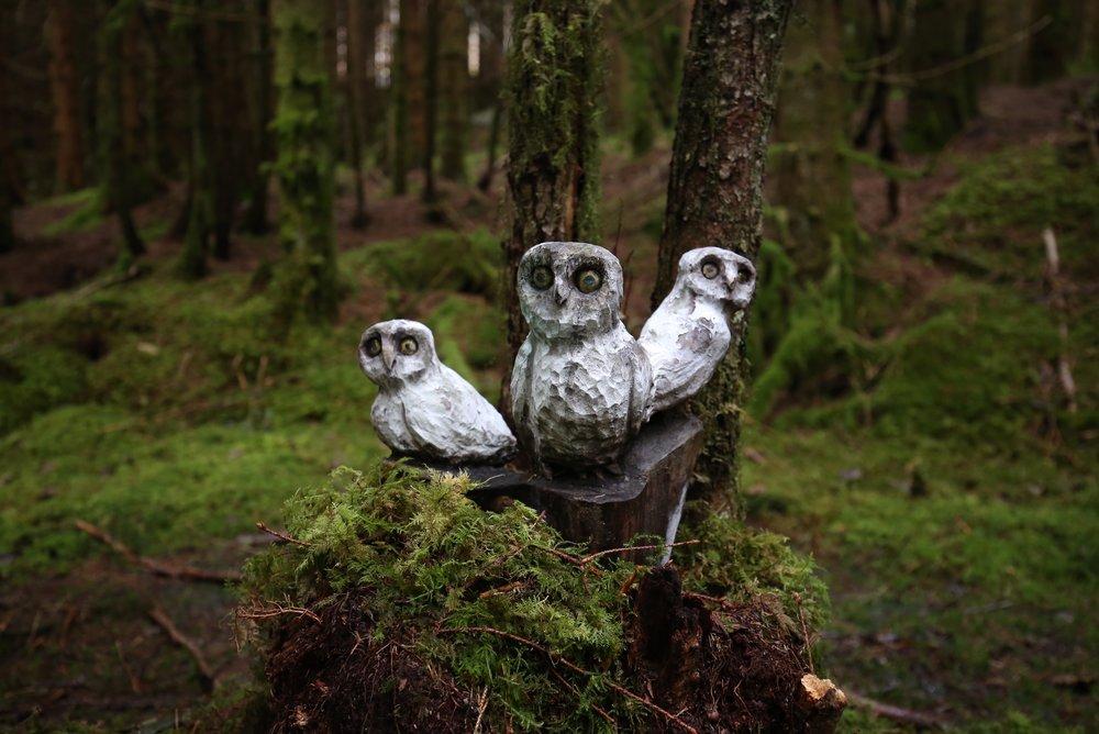 carved owls fairytale forest ardal