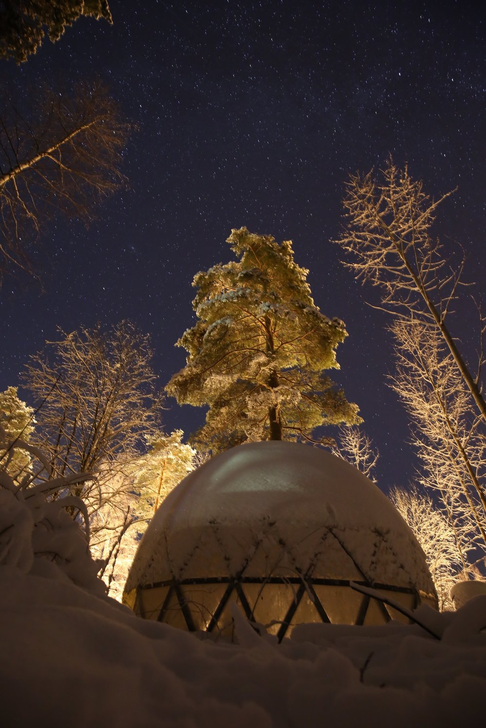 igloo in Finland under stars