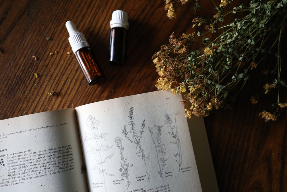 dried herbs and lore