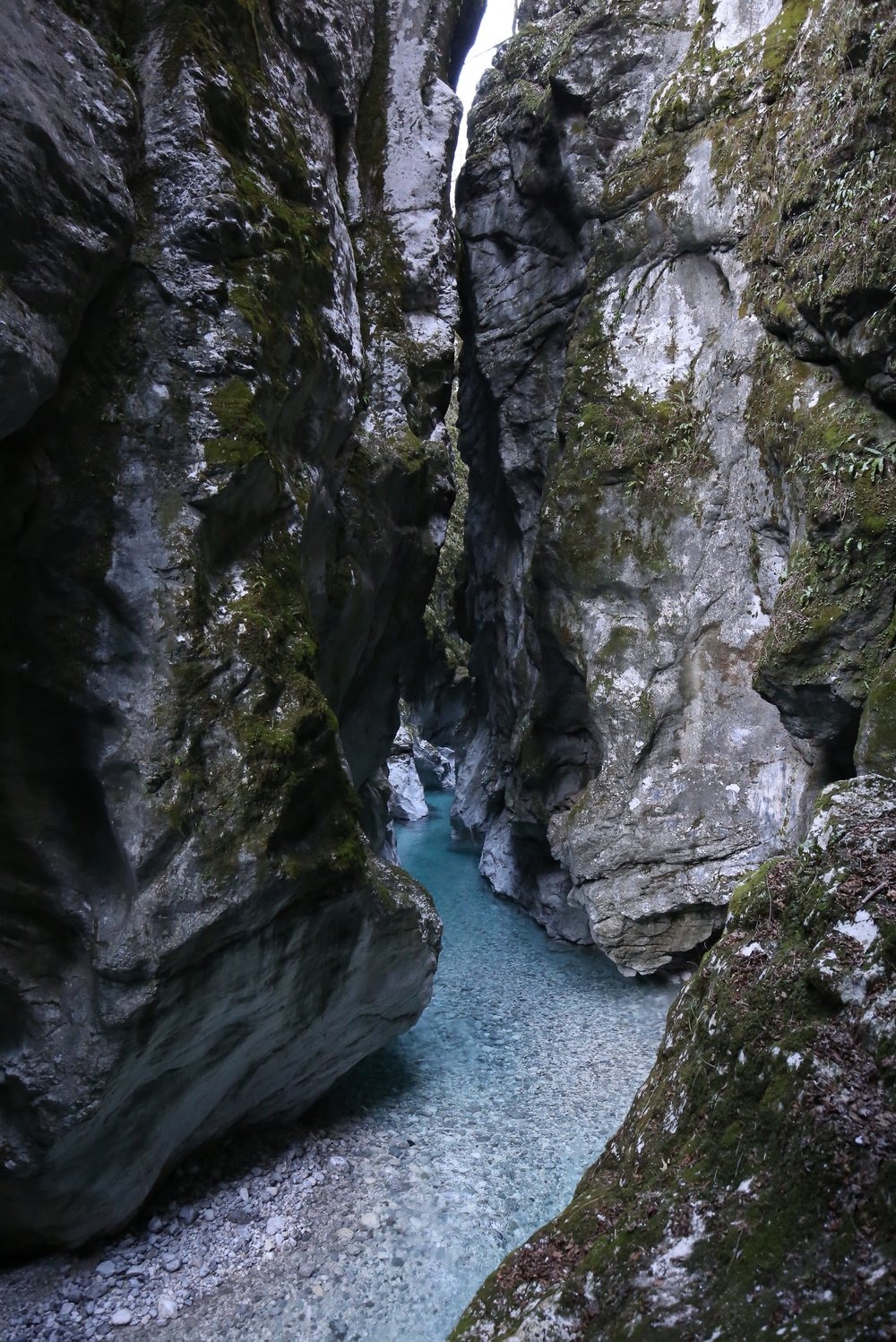 The Vintgar Gorge river is still blue in the winter.
