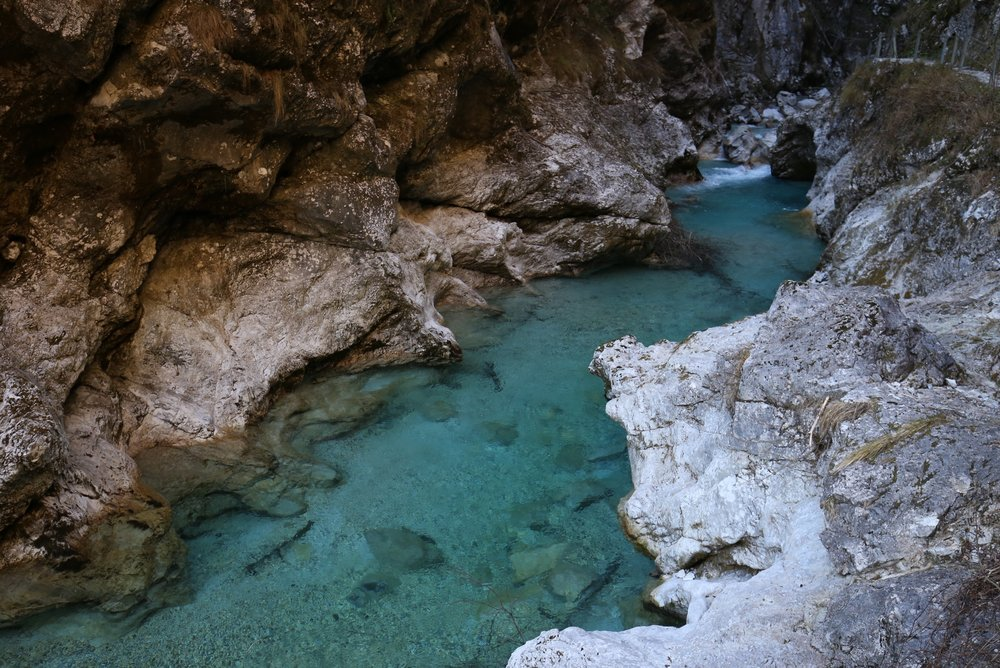 The beautiful Vintgar Gorge - with its blue waters running through a narrow canyon.