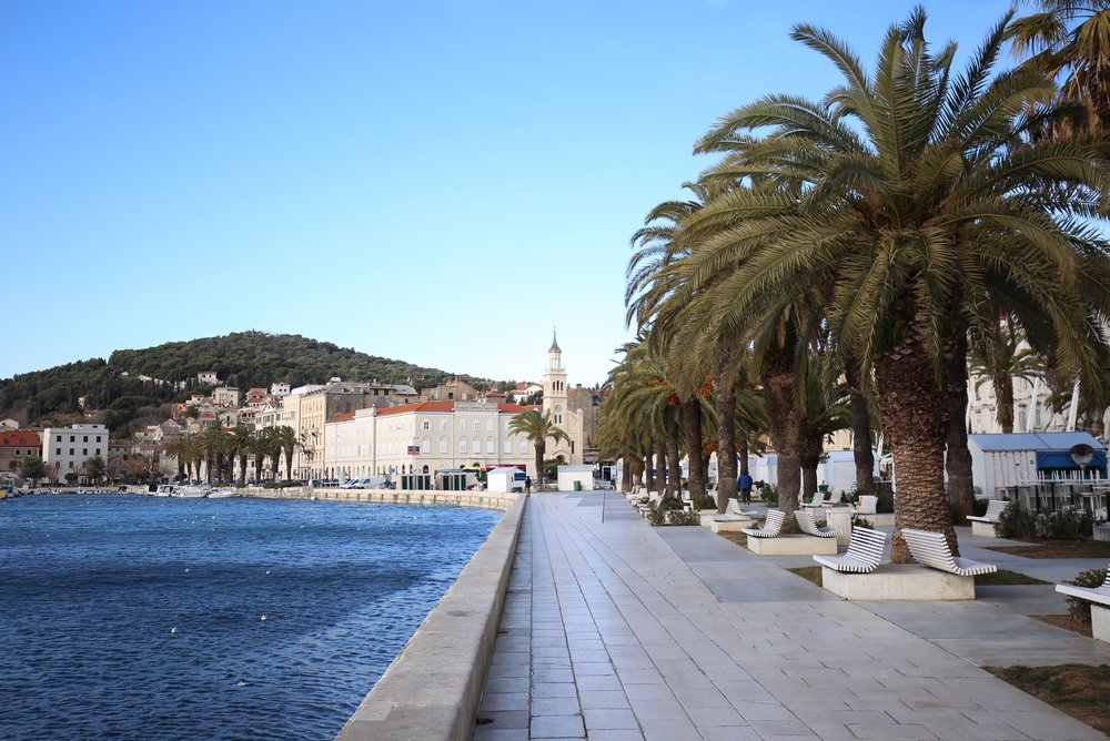 The esplanade and palm trees by the sea in Split, Croatia.