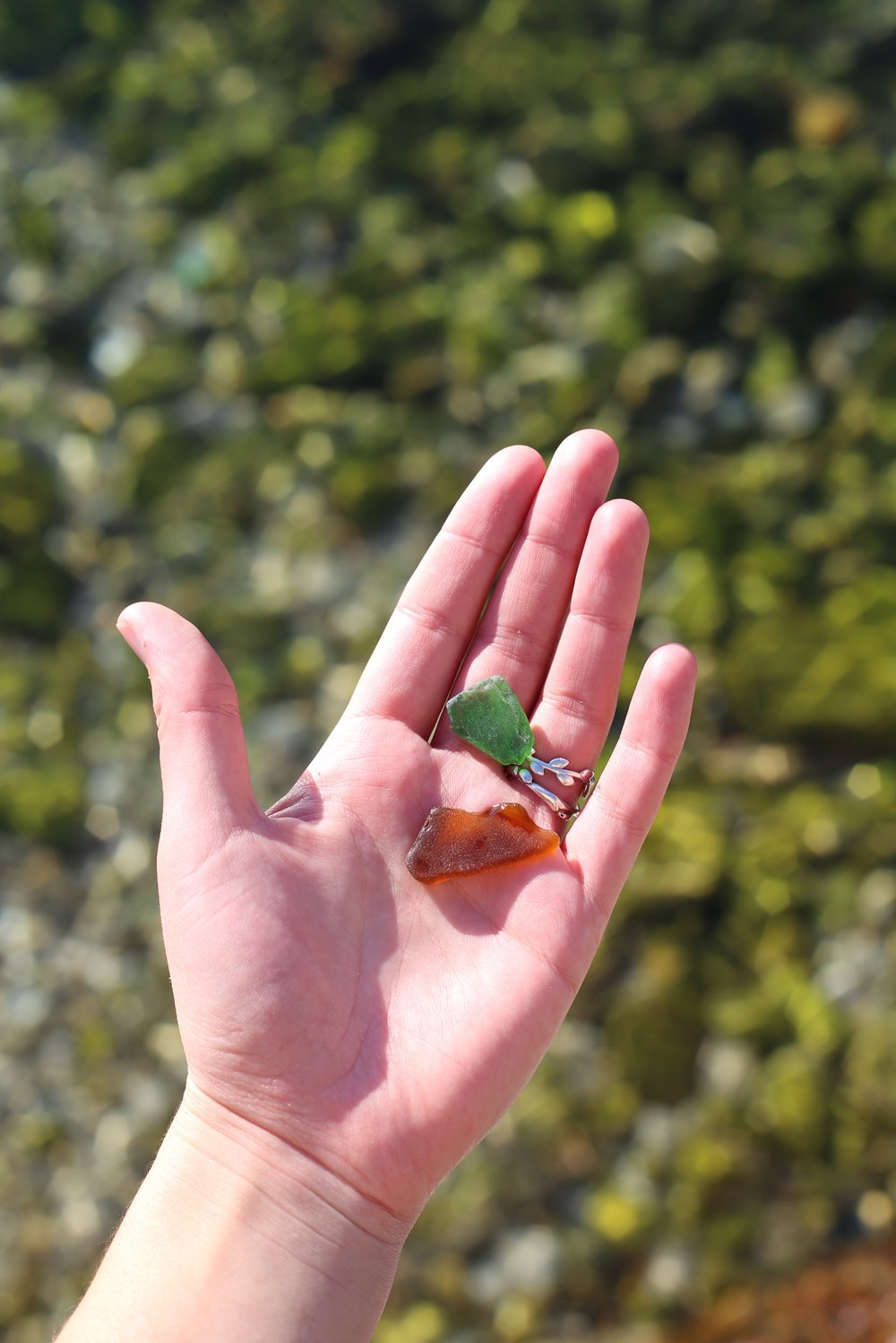 Green and brown sea glass.
