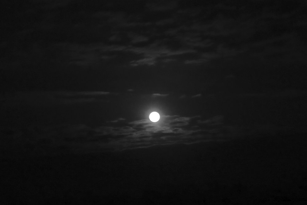 Creepy full moon - old style black and white.