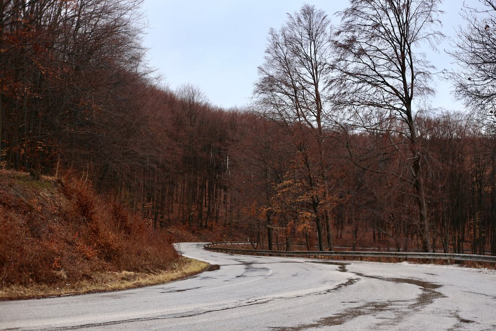 Autumn in Slovakia - when all the forest turns red.